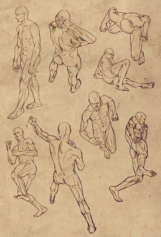El Arte de Lovely-Lina: Ayuda para dibujar la anatomía masculina