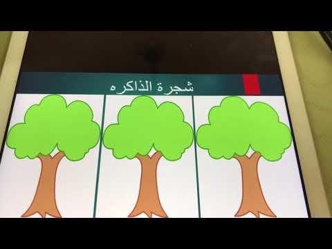 استراتيجية شجرة الذاكره أمل بنت حصه Youtube Silver Frame Education Family Guy