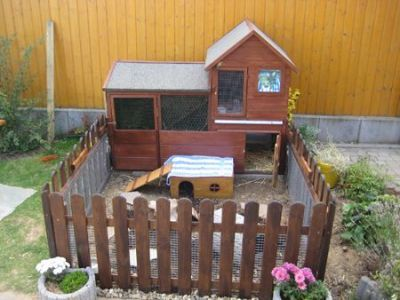 ourdoor shell for rabbits Rabbit Housing Ideas