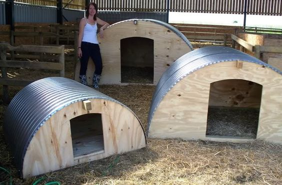 Small Metal Animal Shelters : Pig arks the accidental smallholder farm living