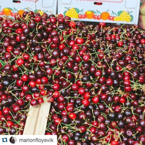 Were feeling very cherry today at milehi! Tag your best...  Instagram travelquote