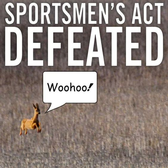 Sportsman bill dies in Senate Sportsman bill dies in Senate http://www.politico.com/story/2014/07/hunting-fishing-bill-dies-sportsman-bill-108763.html … pic.twitter.com/cy5bbBBZg6