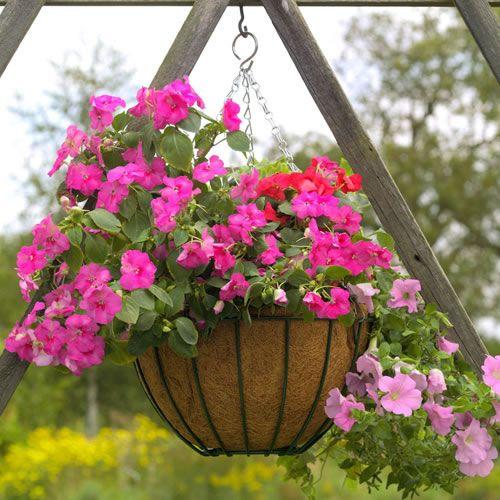 interessante ideen blumenampel im garten rosa blüten