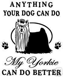 Actually, my Yorkie is a scaredy dog but he sure is sweet :).