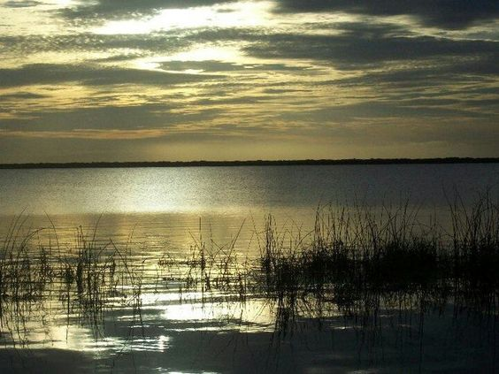 A friend of mines place in Florida...it's beautiful!!