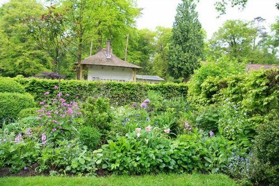 Jardines con arbustos perennes buscar con google for Arbustos jardin pequeno