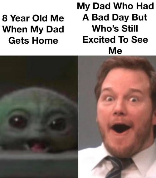 This Is More Like My Dog People Are Never This Happy To See Anyone When They Ve Had A Bad Day In 2020 Stupid Memes Really Funny Stupid Funny Memes