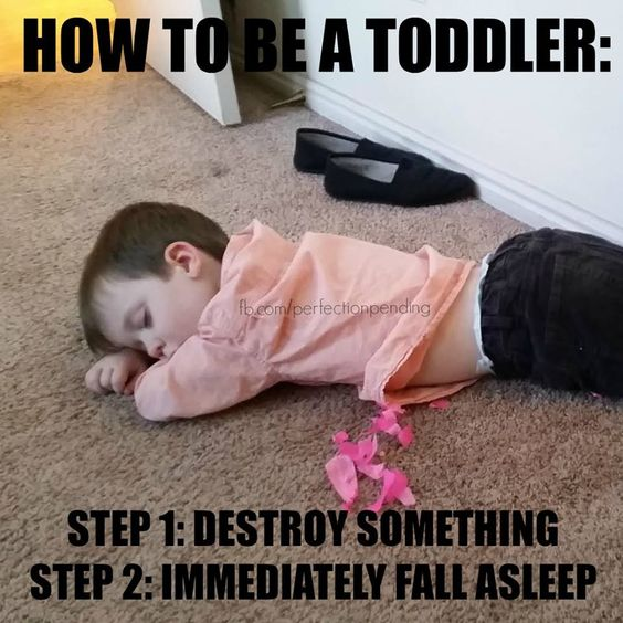 Funny Memes For Parents : Parenting memes to make you laugh be how and