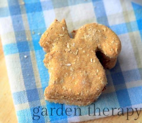 Ilovemydoggy Dogsruletheworld Dogsmakeeverythingbetter Bestdogever Bestdogontheplanetearth Best In 2020 Dog Cookie Recipes Homemade Dog Cookies Dog Biscuit Recipes