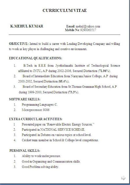 amazing resume examples     sample template example of    amazing resume examples     sample template example of excellent professional curriculum vitae cv format   career objective job pro…