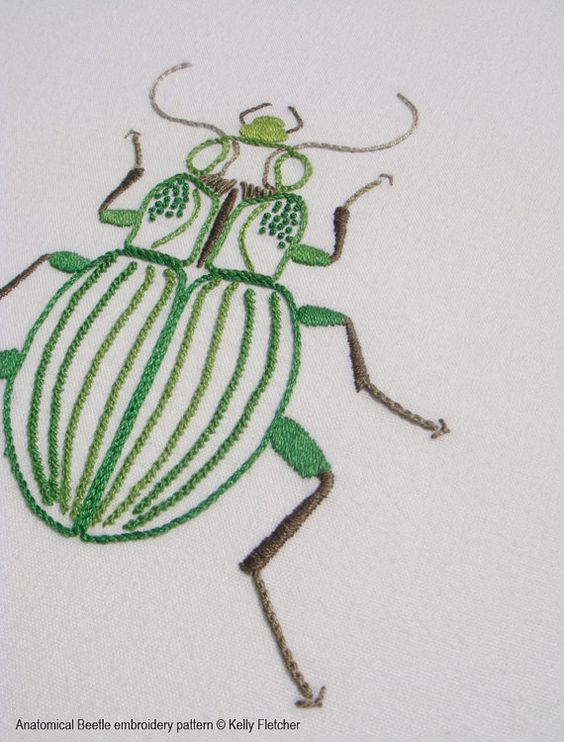 Anatomical beetle modern hand embroidery pattern
