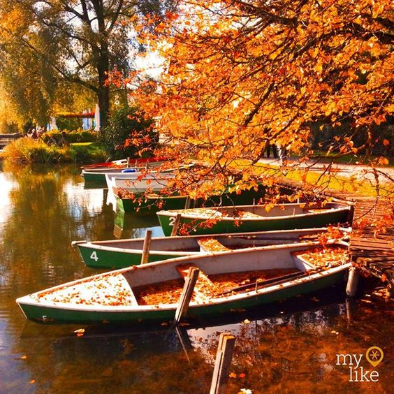 """""""Lake Wessling is a small but charming lake in the middle of the town of #Wessling in Southern #Germany.  It is part of the Bavarian  #FiveLakeRegion which…"""""""