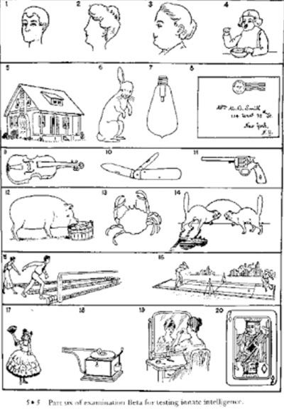 Contoh Psikotes Gambar : contoh, psikotes, gambar, Psikotes, Jenis, Psikologi, Dalam, Seleksi, Kerja, Contoh, Menjawab, Psikotest, Lulu…, Matematika, Dasar,, Psikologi,, Wawancara
