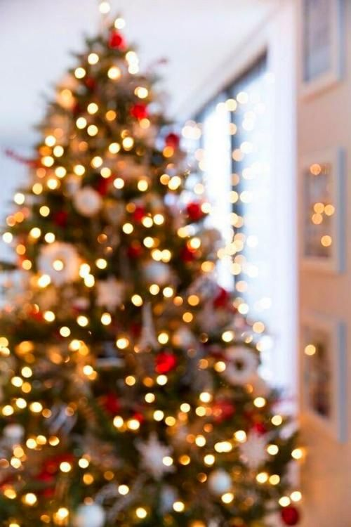Xmas Decor Christmas Aesthetic Christmas Wallpaper Backgrounds Christmas Wallpaper