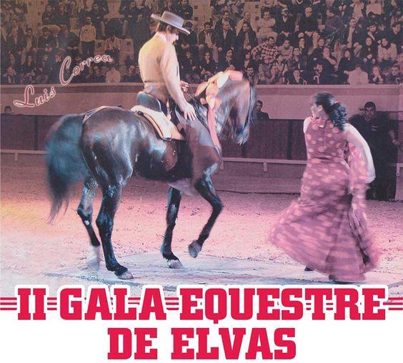 II Gala Equestre de Elvas num misto de Fado, Flamenco e Cavalos | Portal Elvasnews