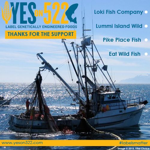 Thank you to loki fish co lummi island wild eat wild for What do wild fish eat