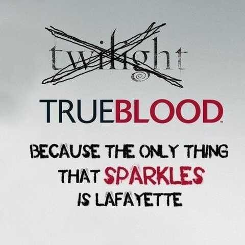 I have never watched any of the twilight movies, and I don't feel a need to. But I LOVE True Blood! (: