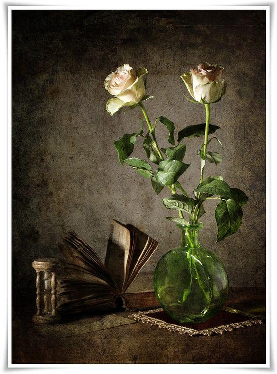 Os livros são o tesouro precioso do mundo e a digna herança das gerações e nações.  Henry David Thoreau