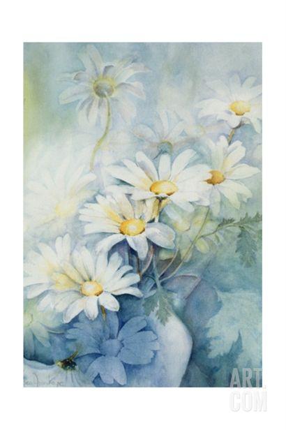 Marguerites, Alexandria Giclee Print by Karen Armitage at Art.com