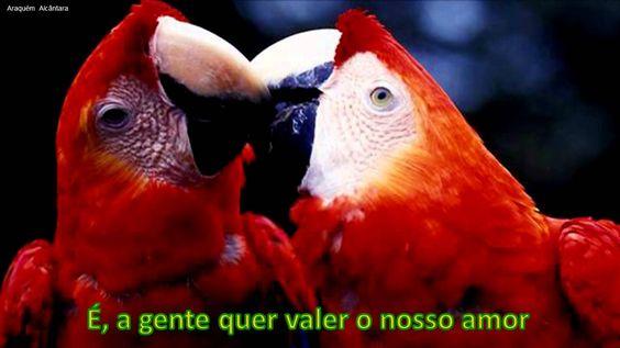Brasileiros (É - Gonzaguinha)