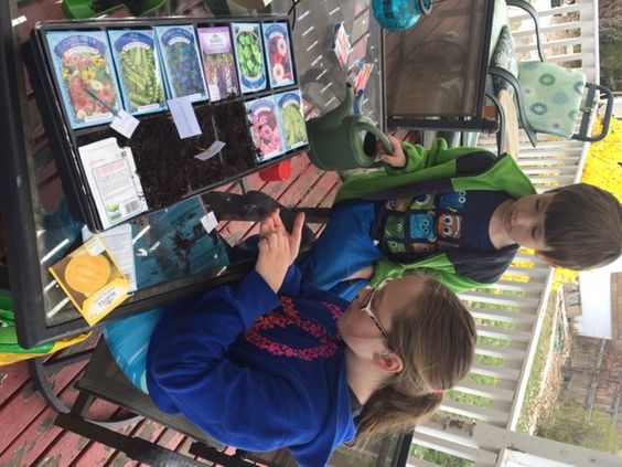 Who knew you could buy vegetable and flower seed packets for 20 cents?!  My kids and I are trying some starter plants - new approach to our gardening!
