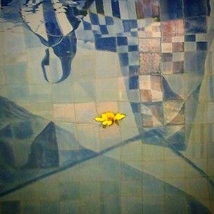 Galerias Instaquadros - Suas fotos favoritas em produtos incríveis
