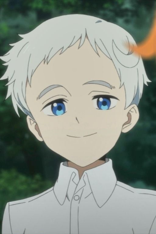 The Promised Neverland Episode 5 : promised, neverland, episode, Reasons, Promised, Neverland, Episode, Perfect, Anime, Shelter, Anime,