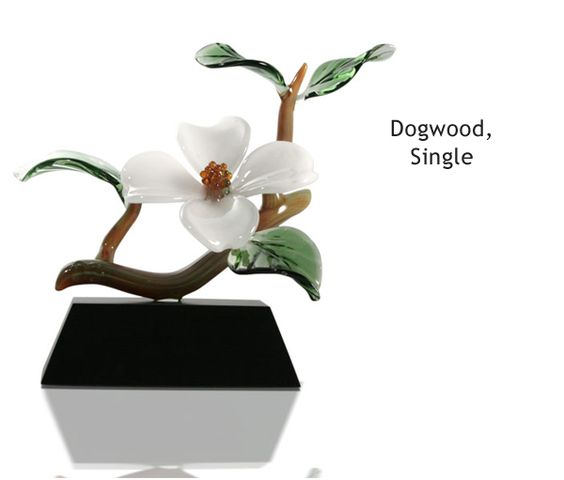 DogwoodSingleColor.jpg The dogwood is the City Flower for Atlanta, our hometown. Love this beautiful single blossom dogwood