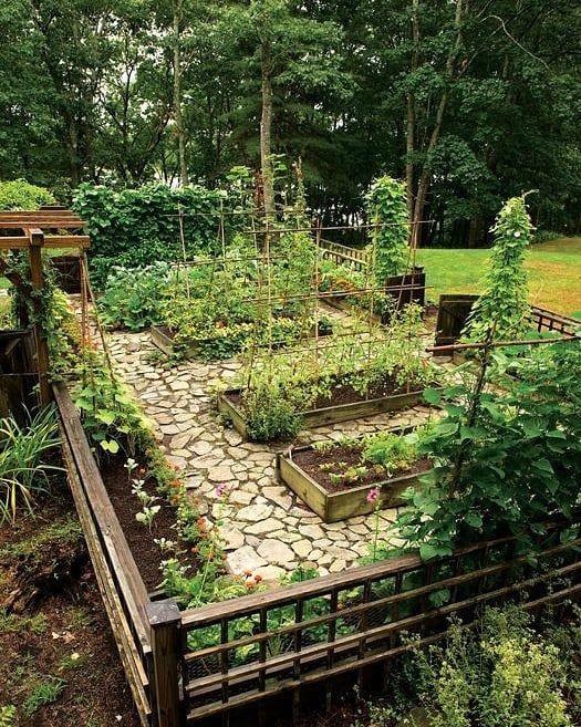 Epingle Par Kinga Pasztor Sur Gardening En 2020 Terrasse Jardin Idees Jardin Amenagement Jardin