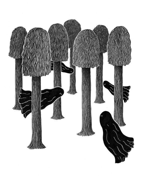 ghostwood - benito leray