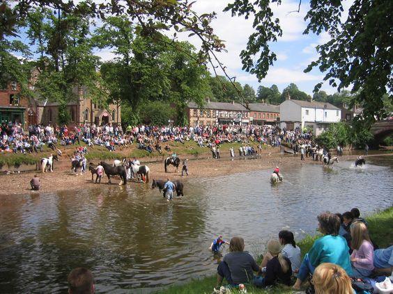 Appleby_Horse_Fair.jpg (2048×1536)