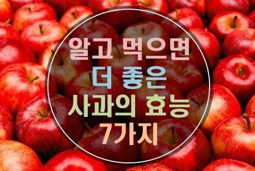 알고 먹으면 더 좋은 사과의 효능 7가지 유기산 건강 음식 건강