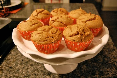 Quick & Healthy 2 Ingredient Pumpkin Muffins