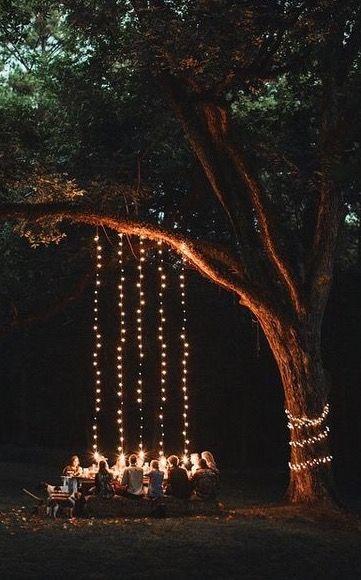 Garden String Lights Pinterest : Gardens, Beautiful and String lights on Pinterest