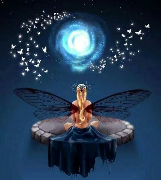 Dragonfly wings Moon Meditator Fairy - Namasté♡🌒 ❤🌹💕💋