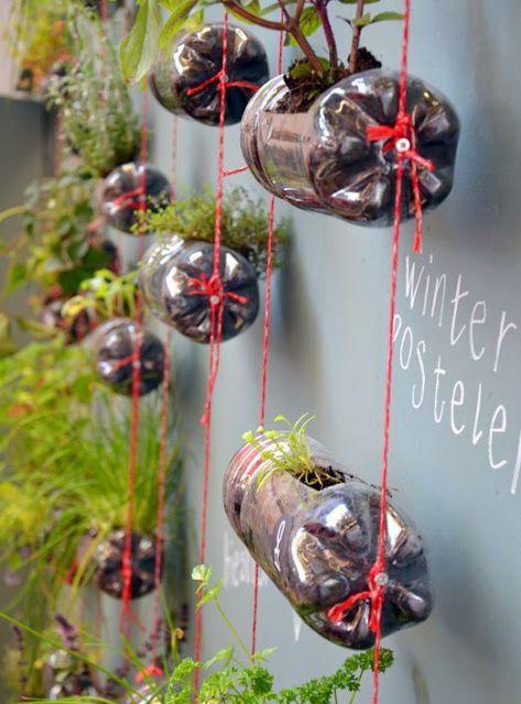 Pot Gantung Dari Botol Bekas : gantung, botol, bekas, Bunga, Botol, Bekas, Taman, Botol,, Tanaman, Gantung,, Proyek