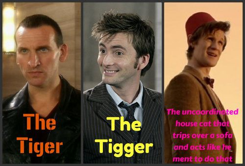 Bahahaha oh my time lord I'm crying. xD They're all so perfect, but Eleven;s description literally made me choke on my gum.