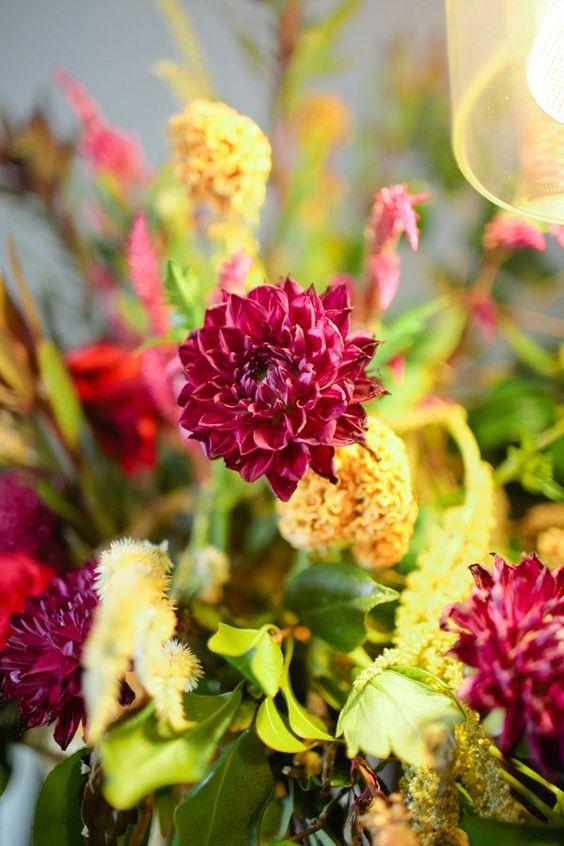 Fuchsia blooms | Photo by Noi Tran