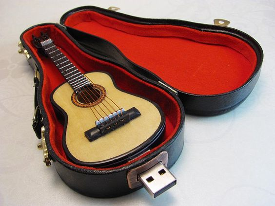 Guitar USB Flash Drive with Carrying Case |Gadgetsin
