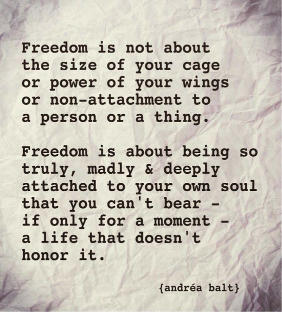 80 Inspirational Quotes On Freedom Sayings Images Freedom Quotes Words Inspirational Quotes