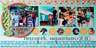 aquarium layout