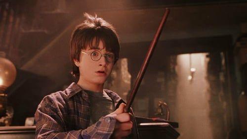 Harry Potter I Kamien Filozoficzny Online Harry Potter Movies Harry Potter Harry Potter Film