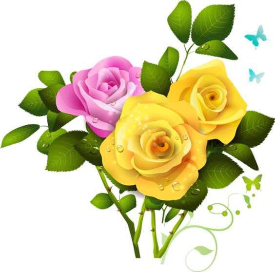 Yellow and Pink Rose Bouquet PNG Clipart | Art Painting ...