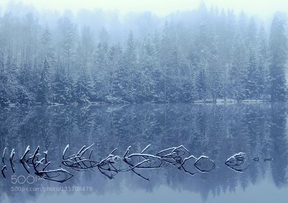 Snowy reflections by ginaups
