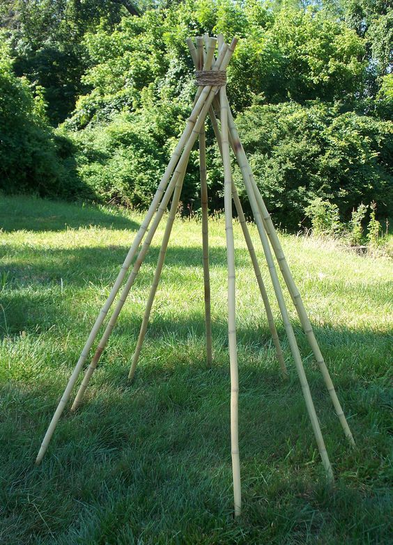Bamboo For Natural Areas 56