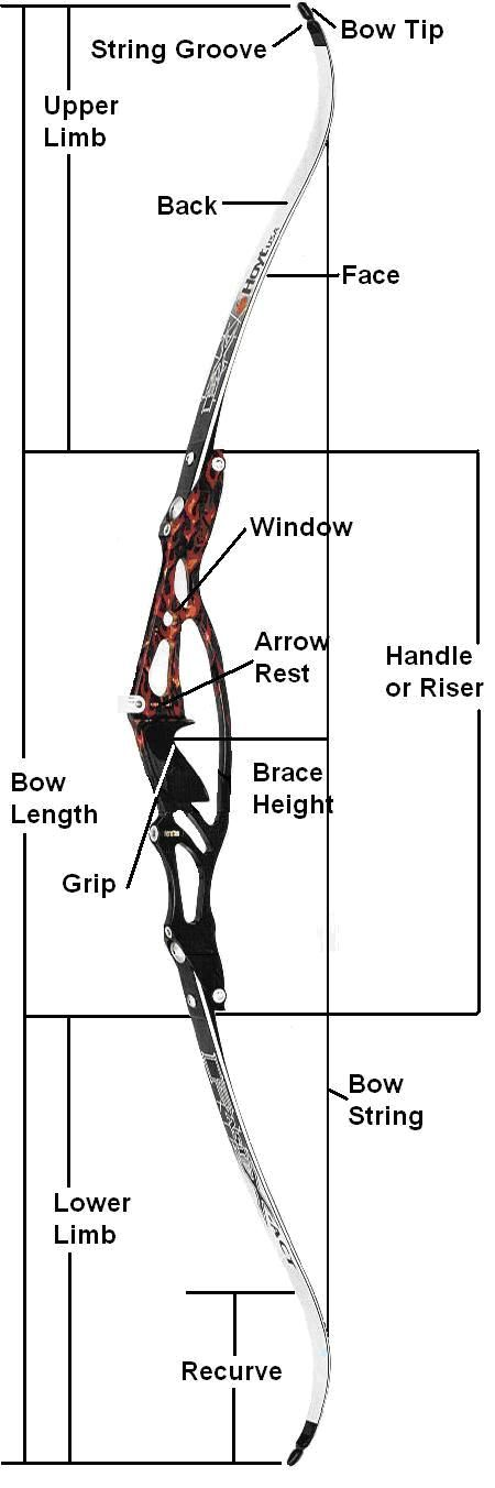 Recurve Bow. Find local archery lessons at [EducatorHub.com]