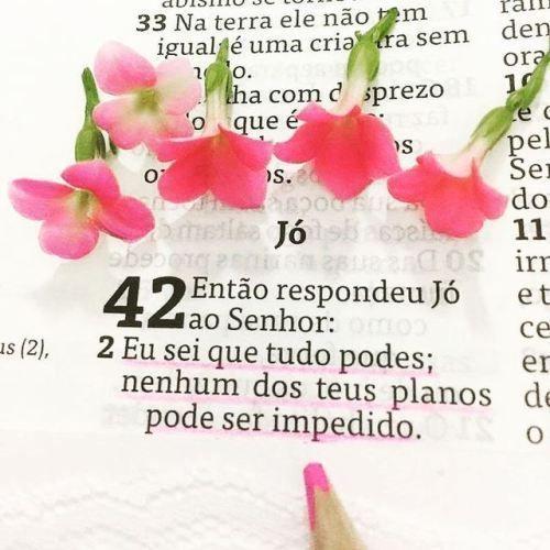 Pin Em Afirmacoes Divinas Vs Diario Com Deus