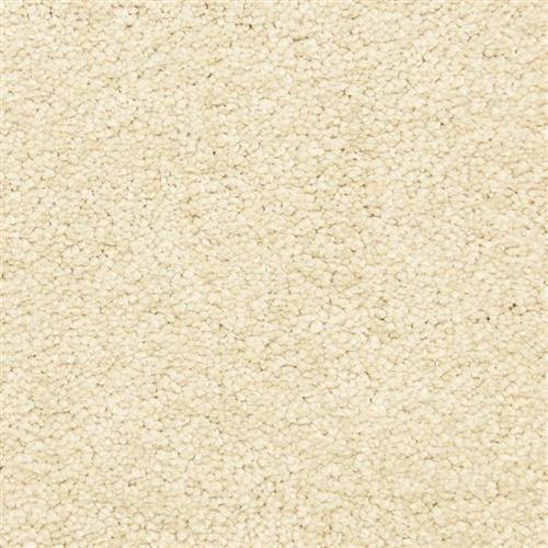 Carpets Vero Beach