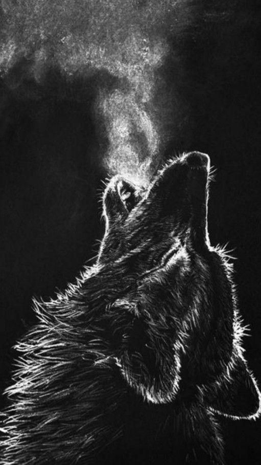 Epingle Par G Deko Sur Wolves En 2020 Loup Noir Noir Et Blanc Fond Ecran
