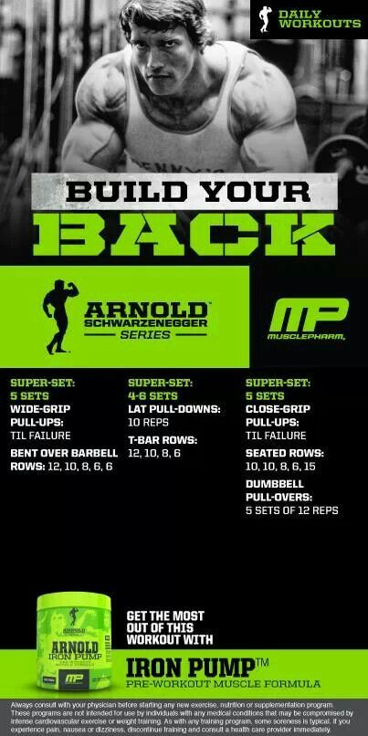 Arnold Build Your Back